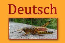 Deutsch 3.Klasse Vereinfachte Ausgangsschrift / Das aktuelle Übungsmaterial enthält genau die Anforderungen, die in der Schule in der #Klassenarbeit / #Schulprobe / #Schularbeit / #Lernzielkontrolle abgefragt werden. #Unterrichtsmaterial / #Arbeitsblaetter / #Uebungen für den #Deutschunterricht in der #Grundschule. Sie finden Übungen für die #3Klasse: #Diktat, #Leseproben, #Dehnungsh #Adjektive #Wiewoerter #Nomen #Namenwoerter #Verben #Tunwoerter #Lernwoerter #Vergangenheit #Zukunft #Satzglieder #Satzgegenstand #Vereinfachte #Ausgangsschrift