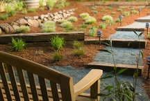 Landscaping - Patio