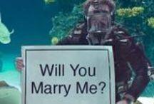 Levee Wedding Ideas