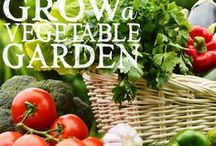 for the garden house