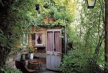 om sneda tak och murgröna