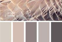 P A I N T / Paint colors