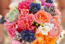 DIY Bouquets / Inspiration for DIY bouquets for any budget wedding! Order from BloomsbytheBox.com today for delivery straight to your door!