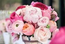 Pink Wedding Flowers / by BloomsByTheBox.com
