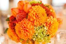 Orange Flower Inspiration / If you love bright and bold tones, these orange flowers will be the perfect accent for your event. Whether you're planning a wedding, a work party or a family reunion, bringing in a pop of orange is sure to create a cheerful atmosphere!