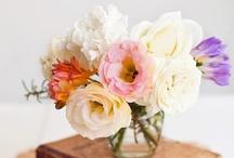 flowers / by La casa sin tiempo