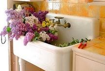 DIY Kitchen / by Kelly Blizzard