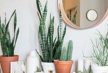 Inspired: plants