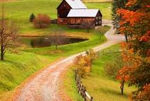 Autumn / by Deborah Nanney