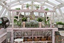 Planters/Greenhouses/Terrariums/Dioramas / by Teresa Eubanks