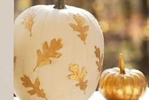 Pumpkin Ideas  / by Deborah Nanney