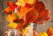 Healthy & Happy Thanksgiving Ideas