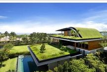 Green Stuff / Eva-tech has been globally recognised as a leading eco-friendly & exceptional choice. These images inspire our ethos. http://www.eva-tech.com/en/