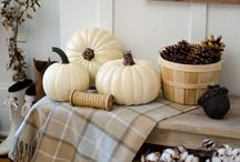 fall decor / Fall decor that's natural, rustic, Americana.  I love to marry my yearly decor with seasonal pieces.