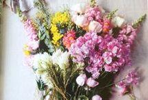 Fleur / by Betsey R. Iannarelli