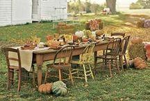 Garden Party! / ~*~ Fun, fanciful outdoor living ideas! ~*~