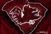 University of South Carolina Gamecocks  / by Jennifer Bise Fox