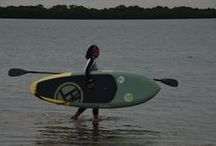 BOGA Paddle Boards / We are the Boga Dealer in the Tampa Bay Area of Florida. We ship east of the Mississippi and the Gulf Coast of Texas. If we do not have the Boga paddle board that you want in stock, please contact us and we will special order it for you. 727-466-7994.  / by Yoga Energy Studio