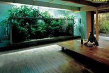 Aquarium Heaven