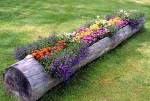 Gardening, container gardens, sheds / Gardening, container gardens, sheds, small space gardening / by Teee Geee