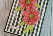 Daisy Delight - Stampin Up / Projects created with the extremely popular Daisy Delight Bundle from Stampin Up - order yours here:  http://stampinwithsandi.com/.  canadian stampin up demonstrator, stampin up card ideas, free stamping tutorials, stampin with sandi, sandi maciver, card making ideas, paper crafting, stampin up, stampin' up!,