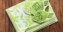 Lemon Zest - Stampin Up / Cards and projects created with the Lemon Zest Bundle from Stampin Up, Lemon Zest Stampin Up, Stampin Up Card ideas, stampin with sandi, sandi maciver, card making, card ideas with lemon Zest,