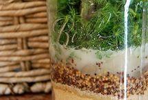 Food: Freezer & Preserving