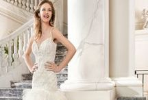 Wedding Dresses / Find the wedding dress of your dreams, whether it be a ball gown, a mermaid style dress, a Trumpet style and so much more!
