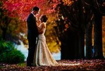 Fall Weddings / Check out gorgeous decor ideas, centerpieces, bouquets, gowns, and much more for a fall wedding.