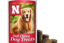 Cornhusker Critters / Cornhuskers come in all shapes and sizes. Celebrating the furry friends in our lives.