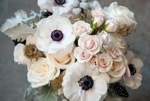 Favorite Bouquets
