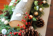 Seasonal Celebrations Stuff / Stuff for celebrating all the special pagan/Christian days of the year. / by Annette Heathen