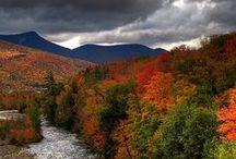 ~ New England ~