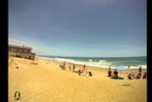 Outer Banks Vacation Rentals / Let us help you plan your Outer Banks beach vacation!   / by Joe Lamb, Jr.