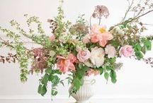 >>> f l o w e r  d e t a i l s <<< / by petal floral design
