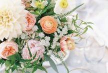>>> c e n t e r p i e c e s <<< / by petal floral design