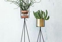 Planters ♥ / Planters, plants, succulents, home garden, home decor, flowers, bloom, botanical, succulents and flower arrangements indoors and outdoors