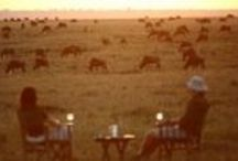 Masai Mara, Kenya / This is the greatest wildlife spectacle in the world! The world-famous Masai Mara is a vast fertile wilderness with dense populations of wildlife and therefore plentiful predators. It is of course best known for the annual Great Migration.
