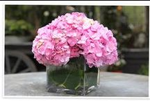 Flowers: A breath of fresh air / Flower arranging tips and arrangements for the home