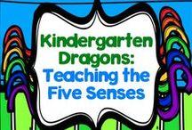 Teaching the 5 Senses