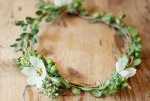 Wreaths / by Lucy (Craftberry Bush)