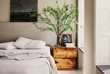 Dwell : Bedroom / by Ali Reese