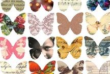 Collage & Scrapbook / by Sarah McMane