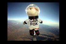The CAR FOX