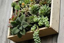 Greenery + Gardening