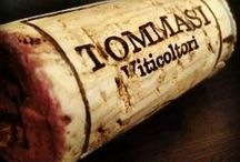 Tommasi Wines / Dedicated to tradition but ever receptive to innovation, Tommasi wines tell the story of a family  that believes in honest labor and love of the land;  a family that lives in harmony and has made  the attainment of excellence a moral imperative.