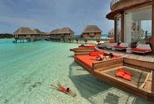V_Maldivas / by GMC 75