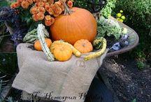 Garden Delights-Fall Gardening / by Sassafras