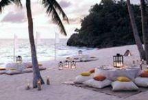 :: Beach, Beach, Beach ::