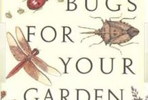 """Garden Delights-Bug Off Kid! / """"Insects and disease are the symptoms of a failing crop, not the cause of it. It's not the overpowering invader we must fear but the weakened condition of the victim."""" ~~William Albrecht  / by Sassafras"""